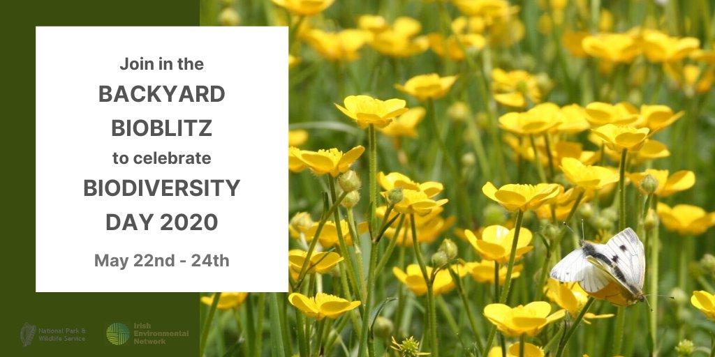 Biodiversity day 2020