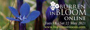 Burren in Bloom @ Online