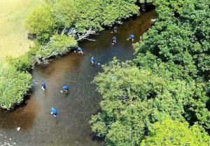 Blue Dot Catchments: Cradles of Biodiversity @ Bantry, Cork