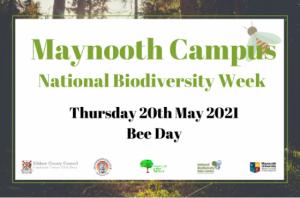 Maynooth Campus Biodiversity Day @ Online