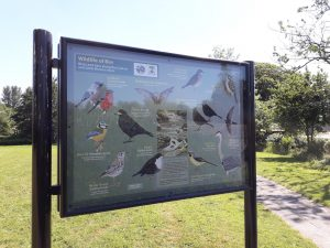 Biodiversity for Community Spaces @ Turlough Park