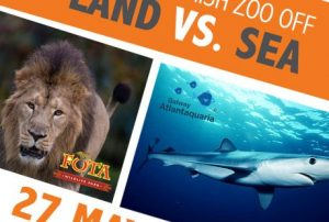 The Great Irish Zoo Off: Land vs. Sea @ Online
