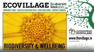 Biodiversity & Wellbeing @ Online - video
